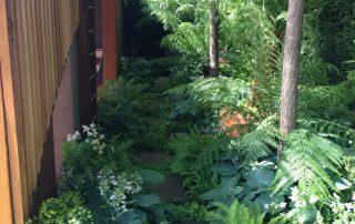 Plants show garden Chelsea Adam Frost David Hurrion