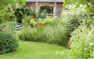 Garden border plants view Stockton Bury
