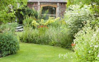 Garden border plants view Stockton Bury